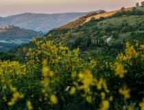 LOCANDA_GALLO_IMG_7800_2