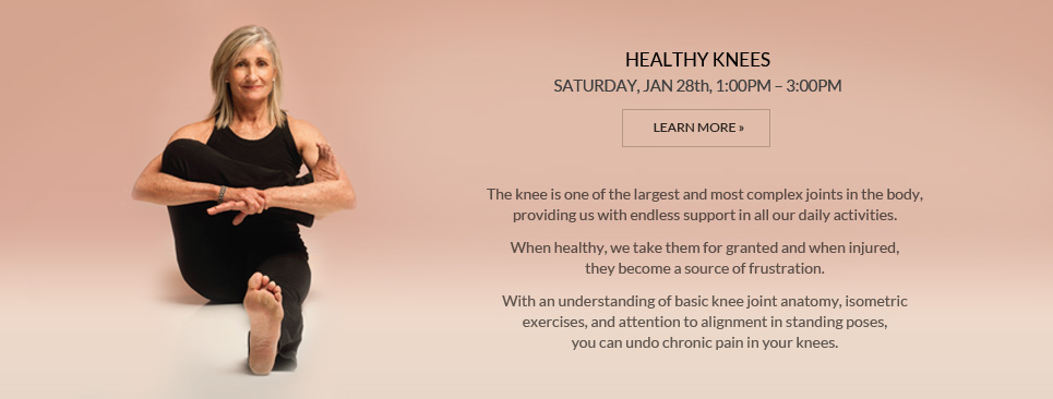 Healthy Knees Workshop