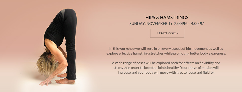 Hips & Hamstrings Workshop